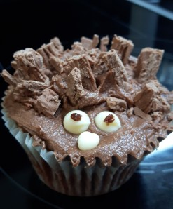 Hedgehog cakes